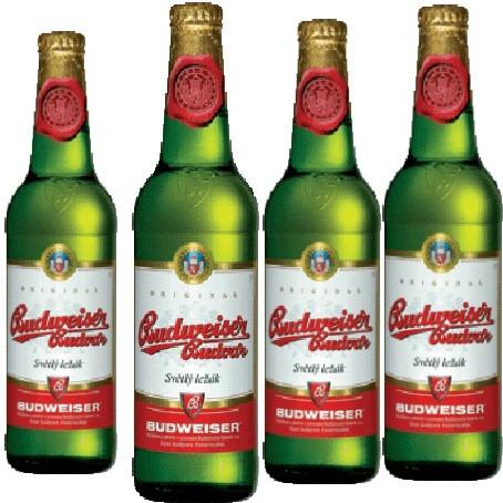 Budweiser Budvar (24/0,33 Ltr. Glas)